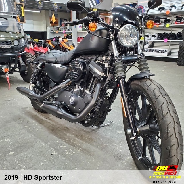 2019   HD Sportster Iron 883